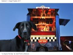 Le dog du Hot dog Jean-Pierre Lefrançois 36ème