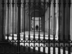Derrière la grille par Stéphane Duquesnoy