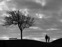 Balade amoureuse par Marie Verin-Dewilde