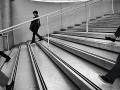 En descendant l'escalierJean-Pierre Lefrançois