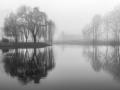 RefletJean-Luc Catoire