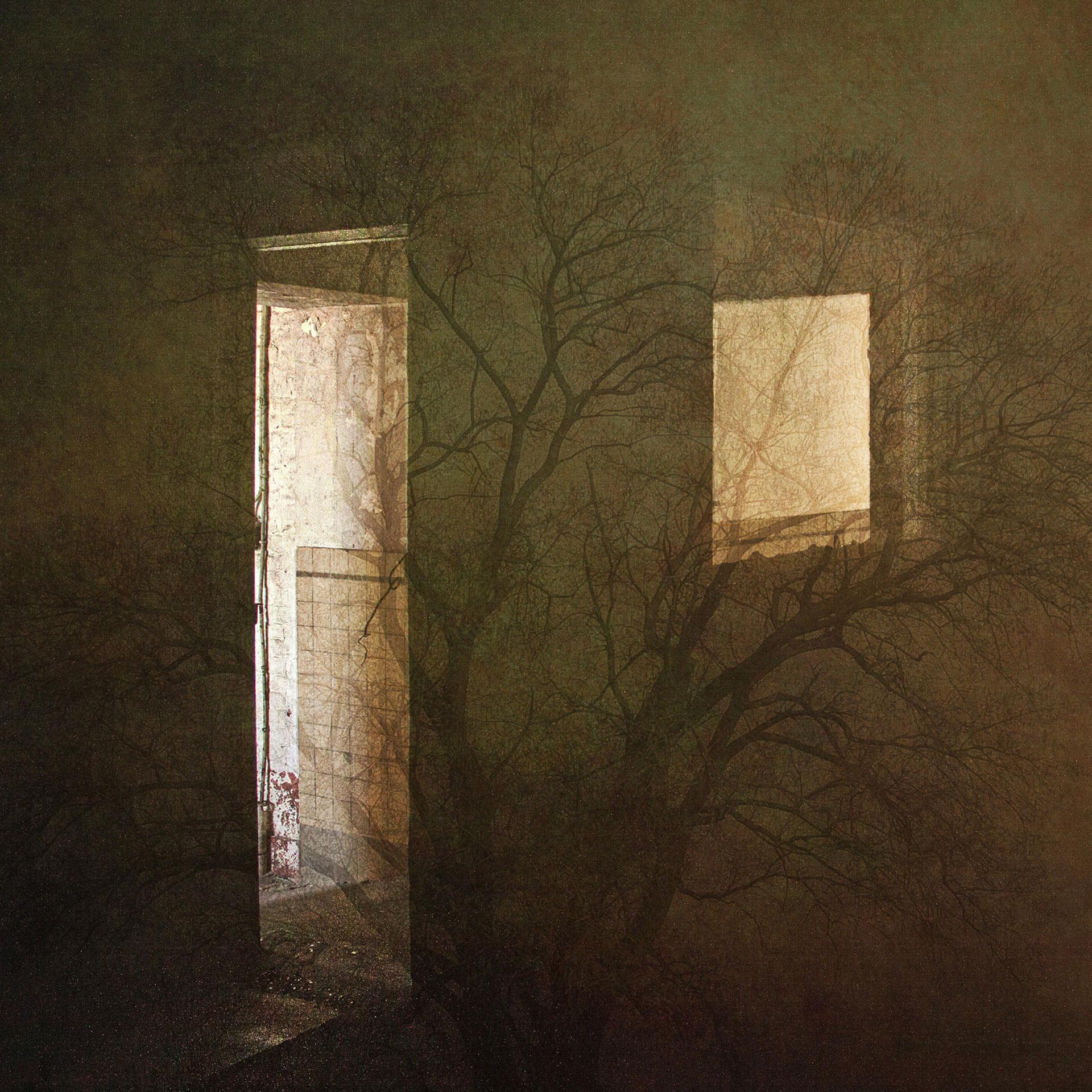 Marie Vérin-Fenêtre, porte, arbre