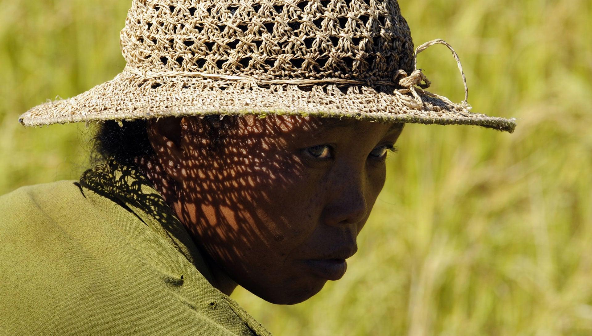 Rita Doose-Mélancolie Malgache