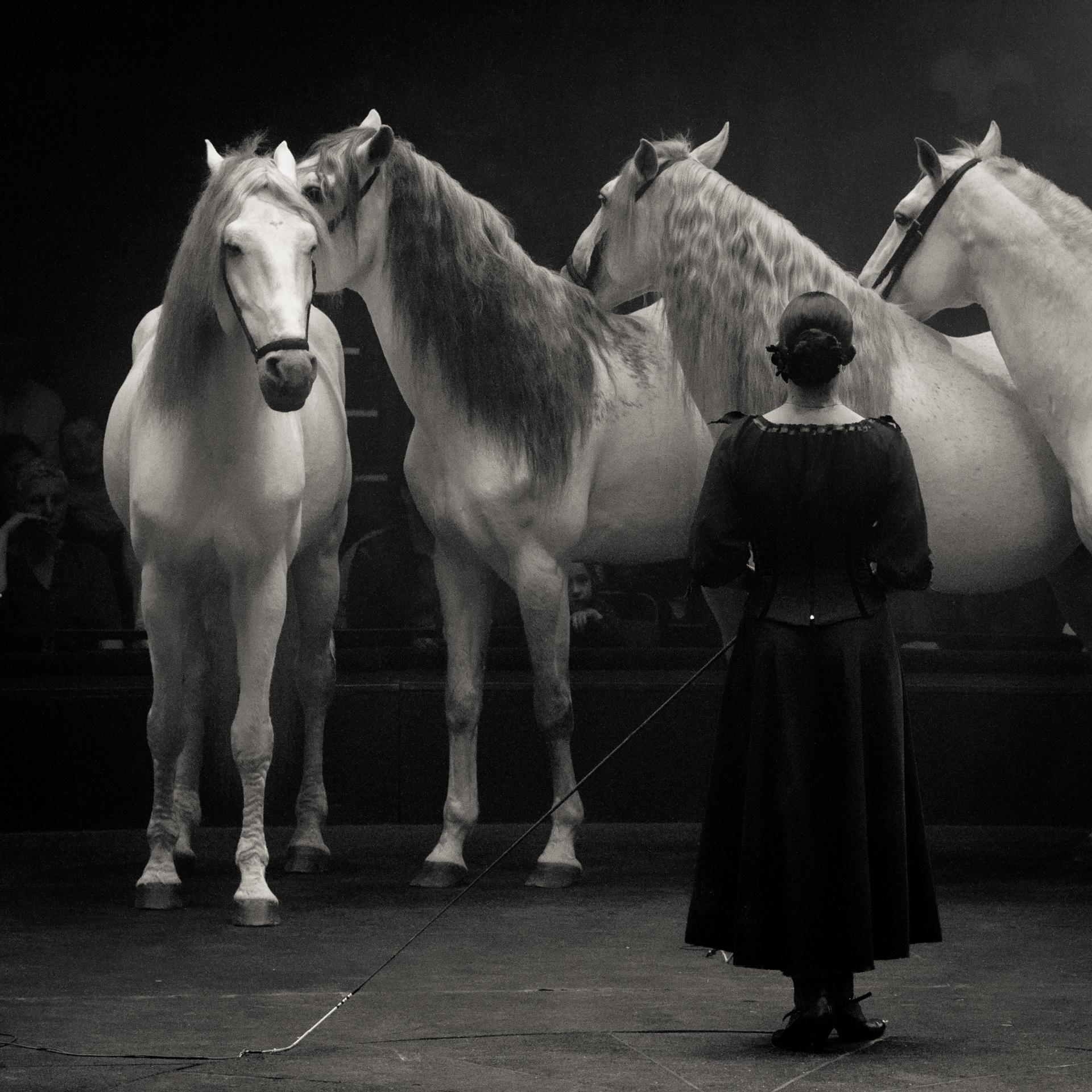 Au cirque de Stéphane Duquesnoy, 14e concours N1 Papier Monochrome FPF